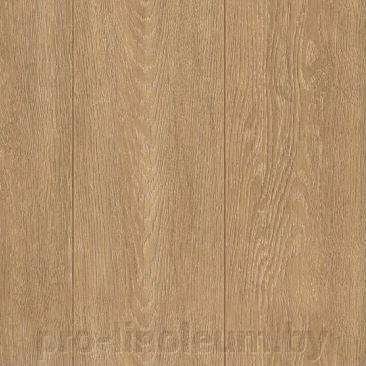 Линолеум Ideal Ultra Lear 691M ##от компании## Pro-linoleum - ##фото## 1